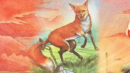 没有尾巴的狐狸