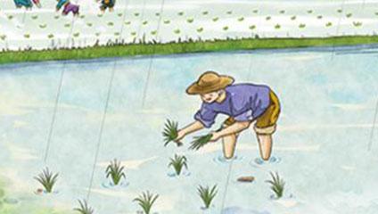 谷雨的有关谚语,你知道哪些与谷雨相关的农业谚语吗?